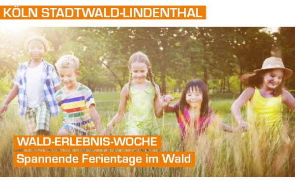Wald-Erlebnis-Woche - Tagescamp in Köln Dünnwalder-Wald