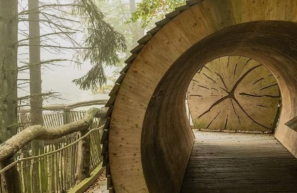 Barrierefreier Wanderweg im Naturerlebnisraum Wilder Kermeter