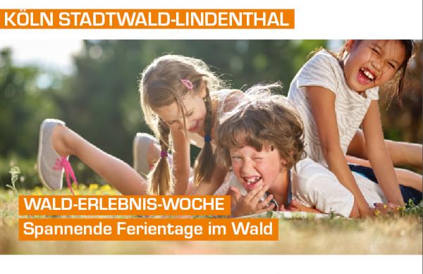Wald-Erlebnis-Woche - Tagescamp in Köln Stadtwald Lindenthal