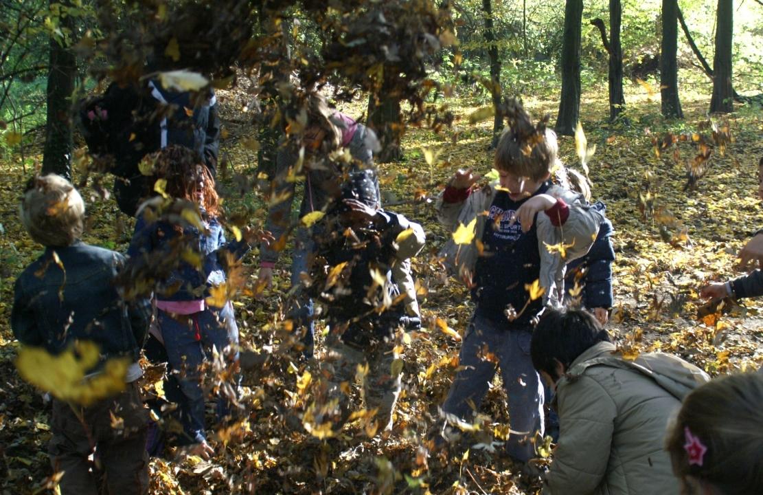 Finkens Garten - Der kostenlose Natur-Erlebnis-Garten in Köln
