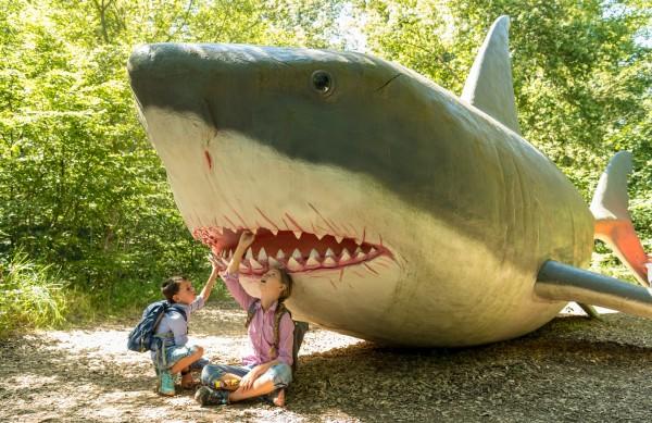 Dinosaurierpark Teufelsschlucht - Gratis Eintritt für Geburtstagskinder