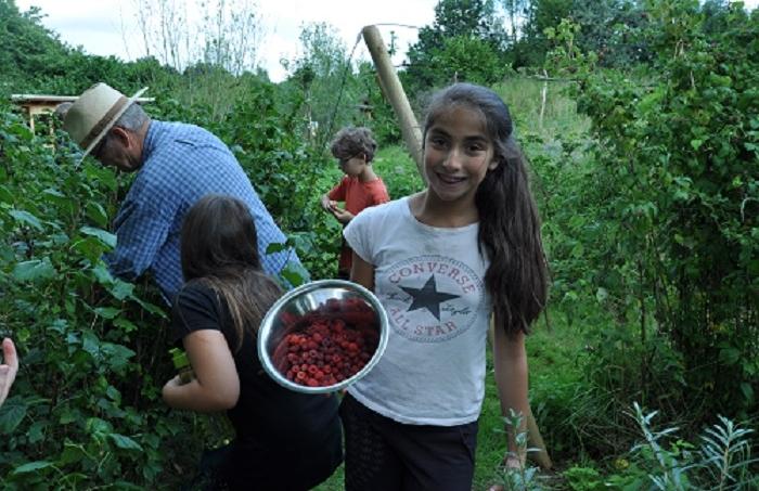 Nachhaltig leben auf dem Bauernhof